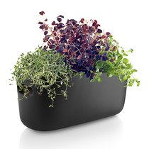 Кашпо для растений с функцией самополива черное - Eva Solo