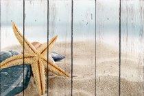 Морская звезда 30х40 см, 30x40 см - Dom Korleone