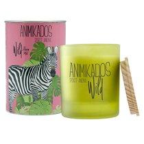 Свеча ароматическая Wild Zebra Цветочный 40 ч - Ambientair