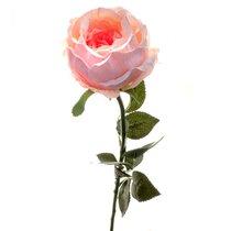 Роза Престиж шиповник ярко-розовая 68 см (24 шт.в упак.) - Top Art Studio