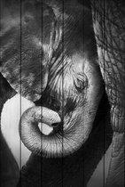 Слоны 30х40 см, 30x40 см - Dom Korleone