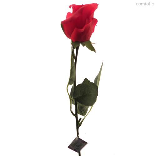 Роза Алба красная 45 см живое прикосновение (24 шт.в упак.) - Top Art Studio