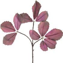 Цветок Искусственный Ветка Орешника Длина 85 см - Silk-ka