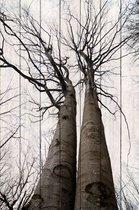 Два дерева 60х90 см, 60x90 см - Dom Korleone
