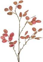 Цветок Искусственный Ветка Денежного Дерева Длина 120 см - Silk-ka