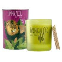 Свеча ароматическая Wild Lion Древесный 40 ч - Ambientair