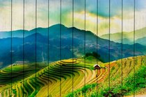Рисовые поля 60х90 см, 60x90 см - Dom Korleone
