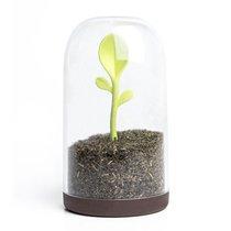 Контейнер для сыпучих продуктов Sprout Jar - Qualy