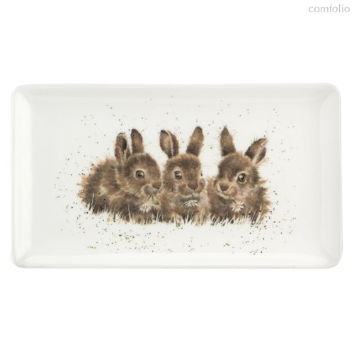 """Блюдо сервировочное прямоугольное Royal Worcester """"Забавная фауна.Крольчата"""" 20х8см - Royal Worcester"""
