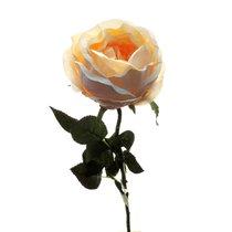 Роза Престиж шиповник розовая 68 см (24 шт.в упак.) - Top Art Studio