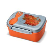 Ланч-бокс с охлаждающим элементом Wisdom N'ice Box™ Fire, цвет оранжевый - Carl Oscar