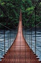 Мост в джунгли 60х90 см, 60x90 см - Dom Korleone