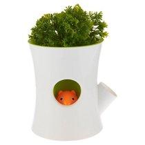 Горшок самополивающийся Log&Squirrel белый-зеленый - Qualy