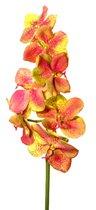 Орхидея Ванда зелено-розовая 86 см 6 шт. в упак. - Top Art Studio
