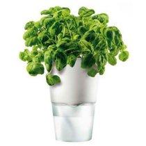 Горшок для растений с функцией самополива ?11 см белый - Eva Solo