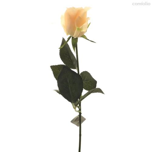 Роза Алба коралловая 45 см живое прикосновение (24 шт.в упак.) - Top Art Studio