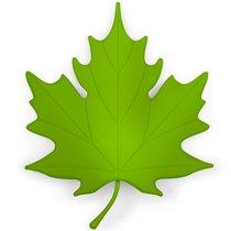 Подпорка для двери Autumn зеленая - Qualy