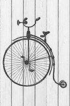 Цирковой велосипед 40х40 см, 40x40 см - Dom Korleone