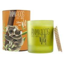 Свеча ароматическая Wild Koala Бальзамические листья 40 ч - Ambientair