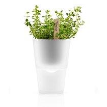 Горшок для растений с функцией самополива ?11 см матовое стекло - Eva Solo